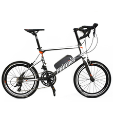 Fantas X-MEN road electric bike